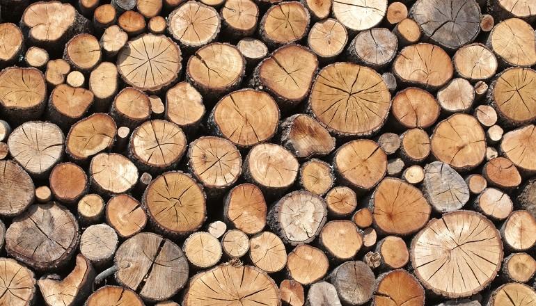 a madera, material único para una construcción sostenible