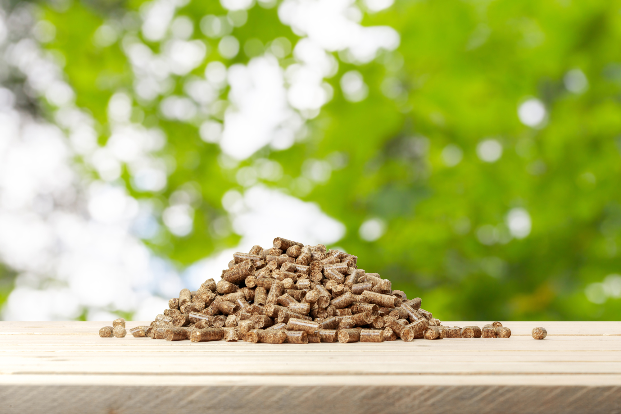 Combustible ecológico: el pellet